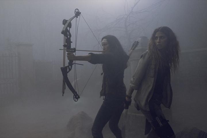 ウォーキングデッド シーズン9 第8話
