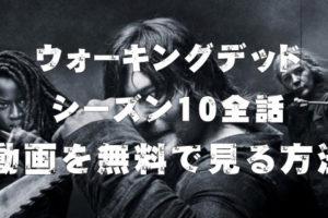 ウォーキングデッド シーズン10 動画